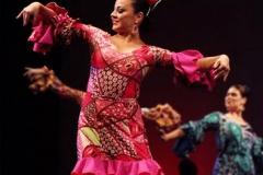 Danz Art   Ballet Folklorico